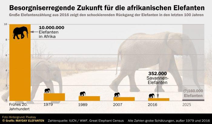 Grafik Elefanten